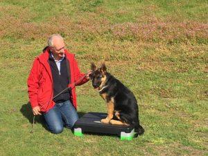 Hondenschool SamenSpel foto-2