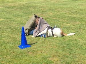 Hondenschool SamenSpel foto-6