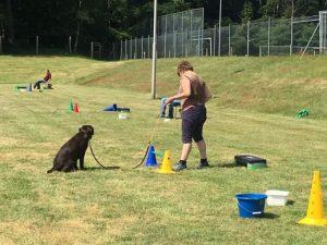 Hondenschool SamenSpel foto-9